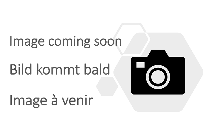 Rubber container ramp